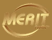 Merit Profile Showcase